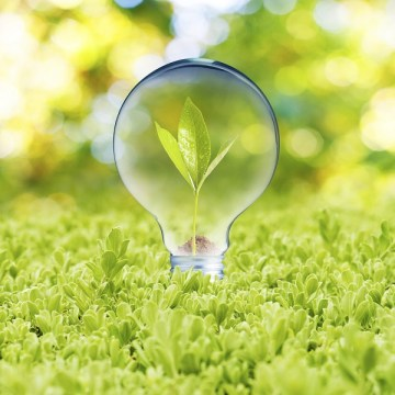 Find An Energy-Saving Solution For Your Business