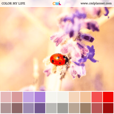 Lovely Lady - Color Inspiration from Color My Life