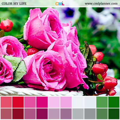 Rose Bouquet - Color Inspiration from Color My Life