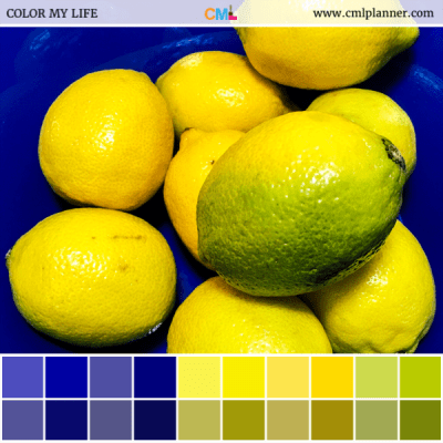 Lemon Bowl - Color Inspiration from Color My Life