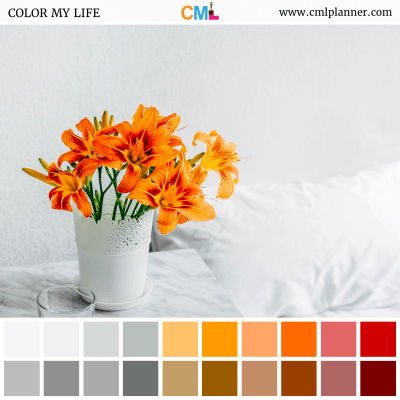 Floral Dreams - Color Inspiration from Color My Life