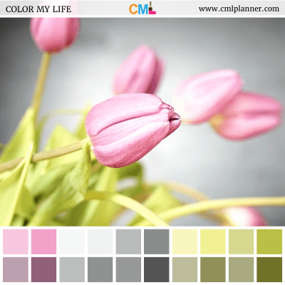 Tulip Blossom - Color Inspiration from Color My Life