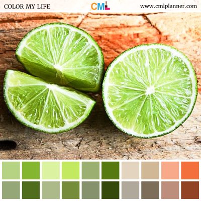 Lime Hues - Color Inspiration from Color My Life