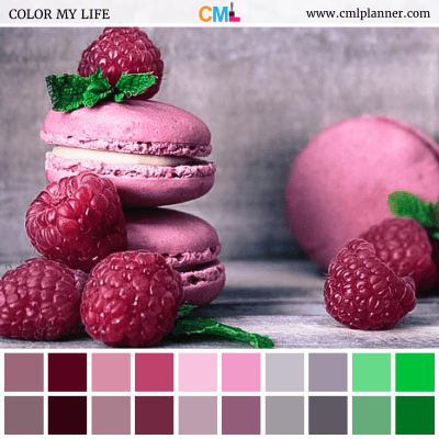 Raspberry Macaroons - Color Inspiration from Color My Life