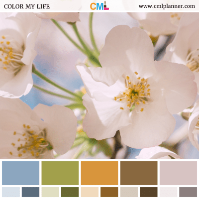 Floral Chroma - Color Inspiration from Color My Life