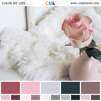 Lovely Rose - Color Inspiration from Color My Life