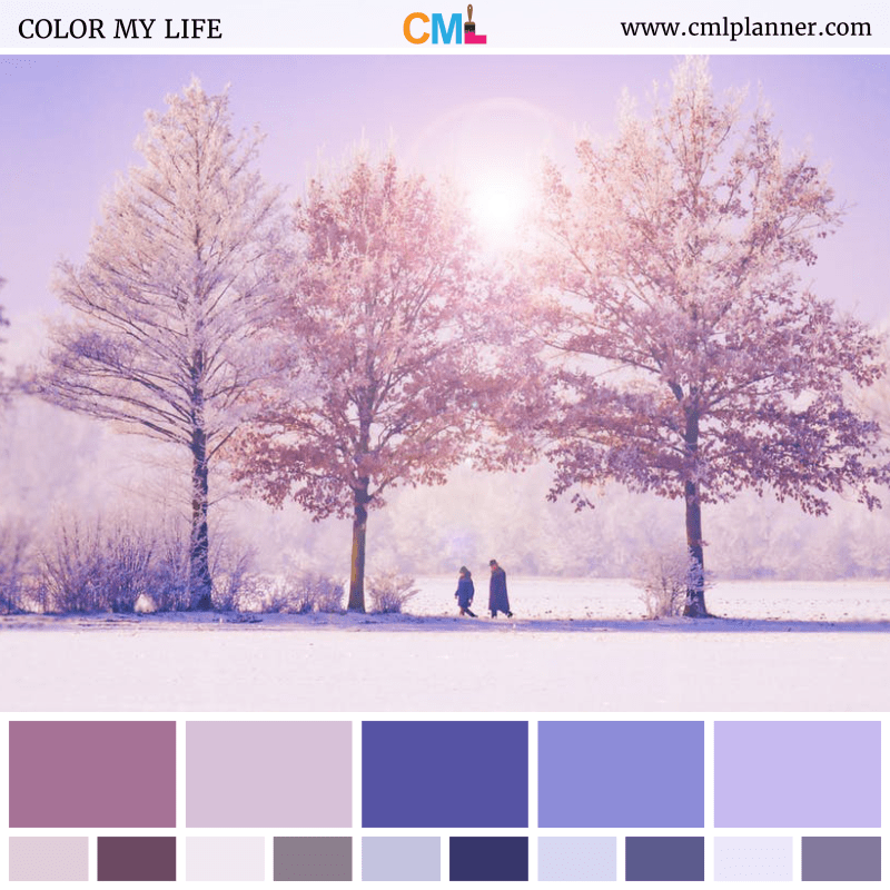 Snowy Landscape - Color Inspiration from Color My Life