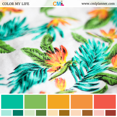 Color Linen - Color Inspiration from Color My Life