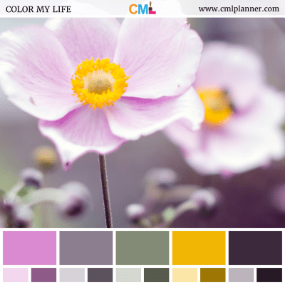 Soft Floral - Color Inspiration from Color My Life