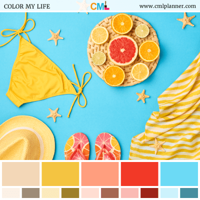 Color Palette #062818 - Color Inspiration from Color My Life