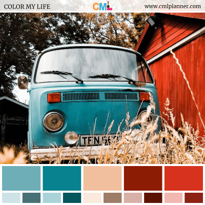 Color Palette #072118 - Color Inspiration from Color My Life