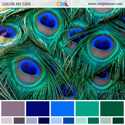 Color Palette #072718 - Color Inspiration from Color My Life