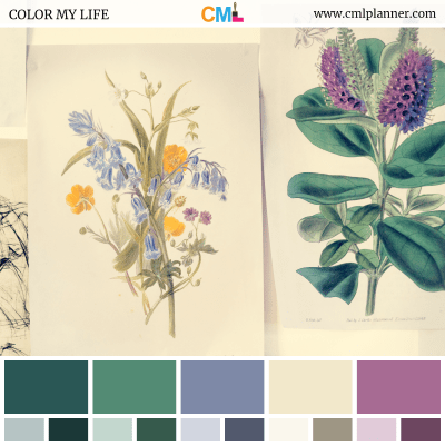 Color Palette #073118 - Color Inspiration from Color My Life