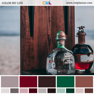 Color Palette #080318 - Color Inspiration from Color My Life