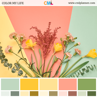 Color Palette #080718 - Color Inspiration from Color My Life