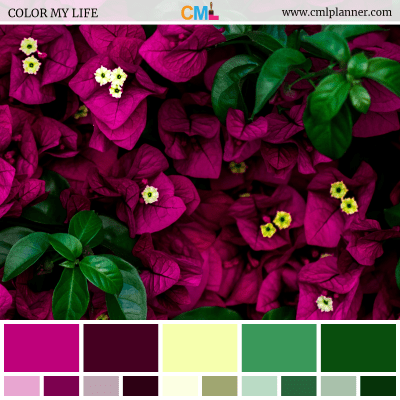 Color Palette #080918 - Color Inspiration from Color My Life