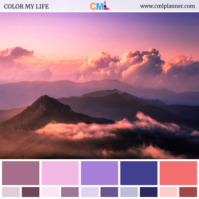 Color Palette #081618 - Color Inspiration from Color My Life