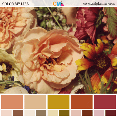 Color Palette #092418 - Color Inspiration from Color My Life
