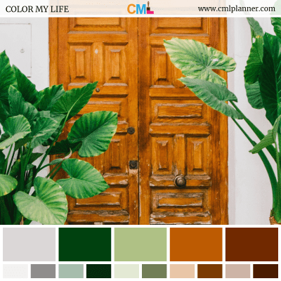 Color Palette #092918 - Color Inspiration from Color My Life