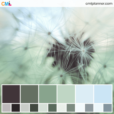 Color Palette #082820 - Color Inspiration from Color My Life. Visit cmlplanner.com/colors/082820 to view the color codes for each color and download the free Adobe (ASE) and Procreate .swatch files.