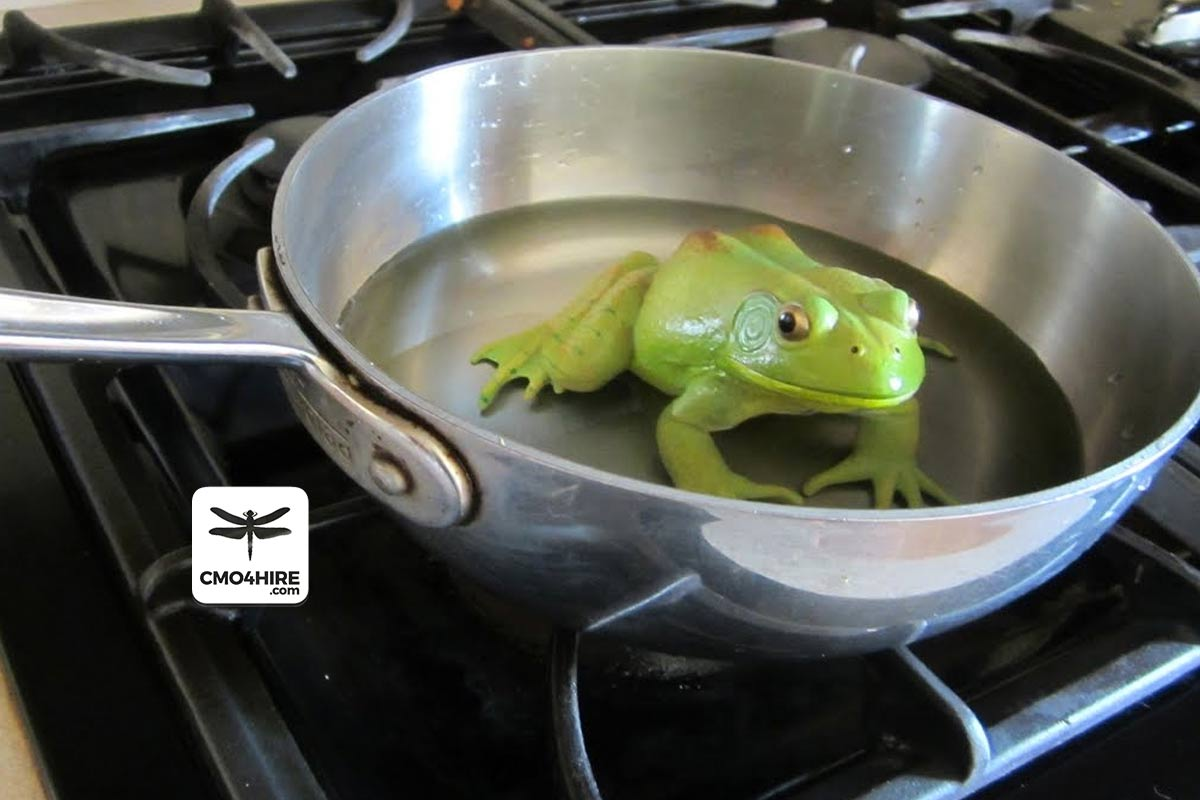 Boiled Frogs: 11 Reasons Companies Don't Embrace Digital Marketing
