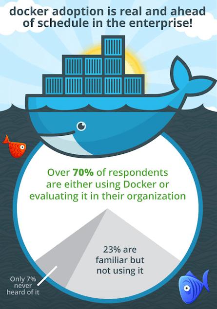 Docker StackEngine survey results.