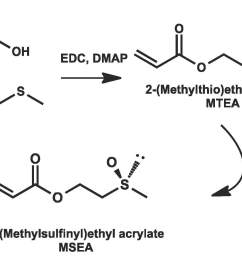 85 2 methylthio ethyl acrylate mtae was prepared as shown in the following schematic and it could be directly polymerized and then oxidized to the  [ 1440 x 1002 Pixel ]