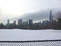 Hiver : la neige recouvre les pelouses de Central Park. (Photo Abdel)
