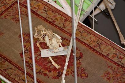 Un squelette de chien lisant Libé... Une expo surréaliste en 2011