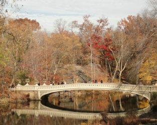 Couleurs d'automne à Central Park. (Photo Marydumonde)