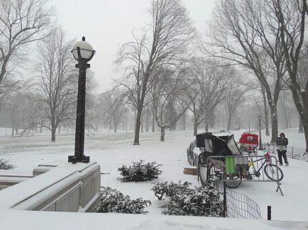 Janvier 2015 : la neige recouvre les allées de Central Park
