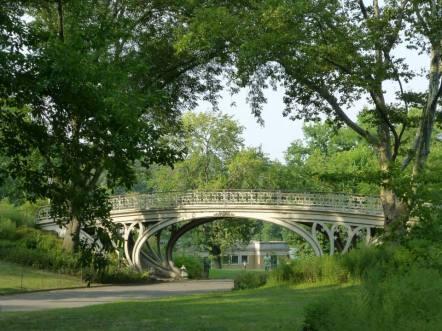 Ambiance paisible dans une allée de Central Park