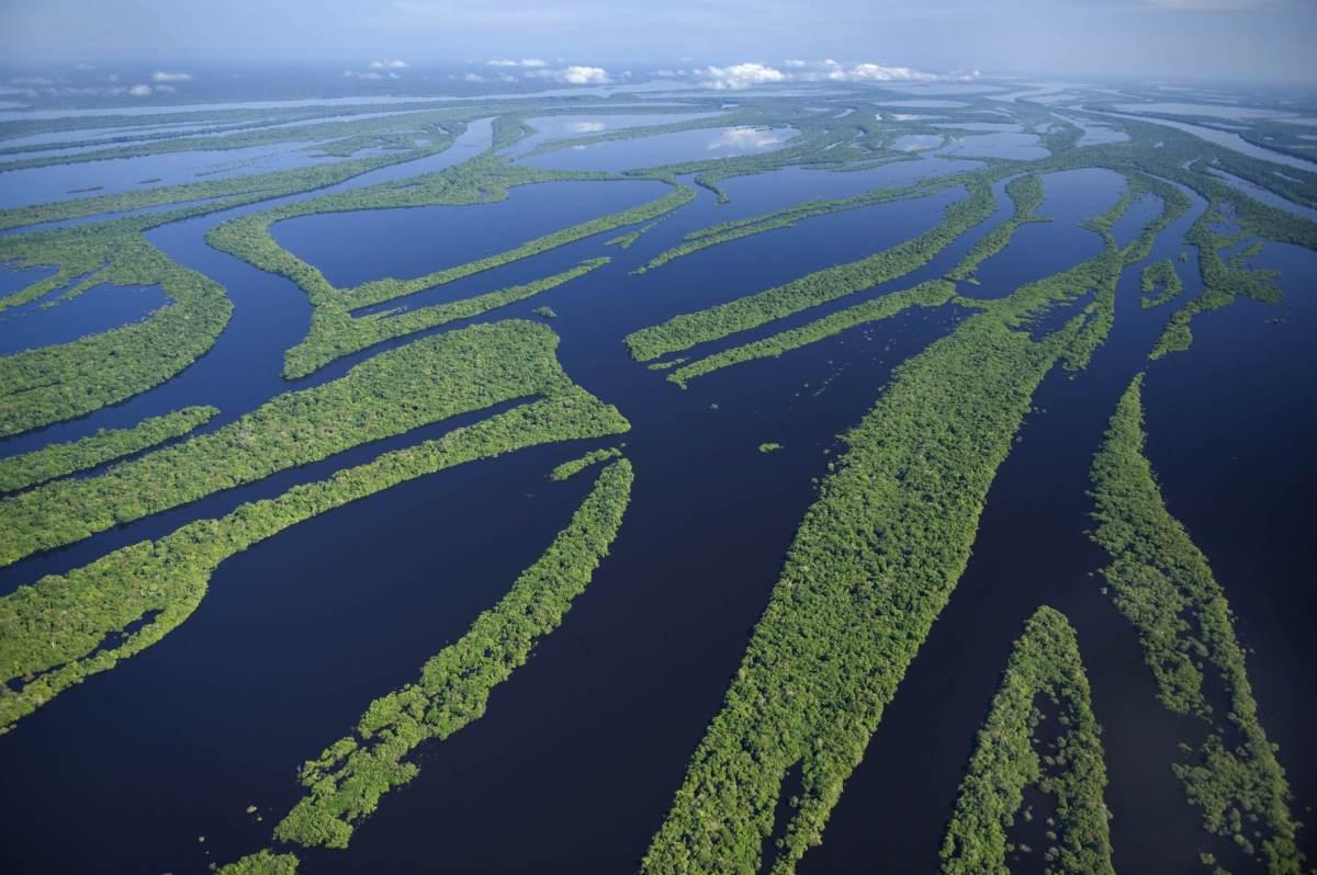 A Amazônia abriga a maior bacia hidrográfica do mundo, a Bacia Amazônica, que de