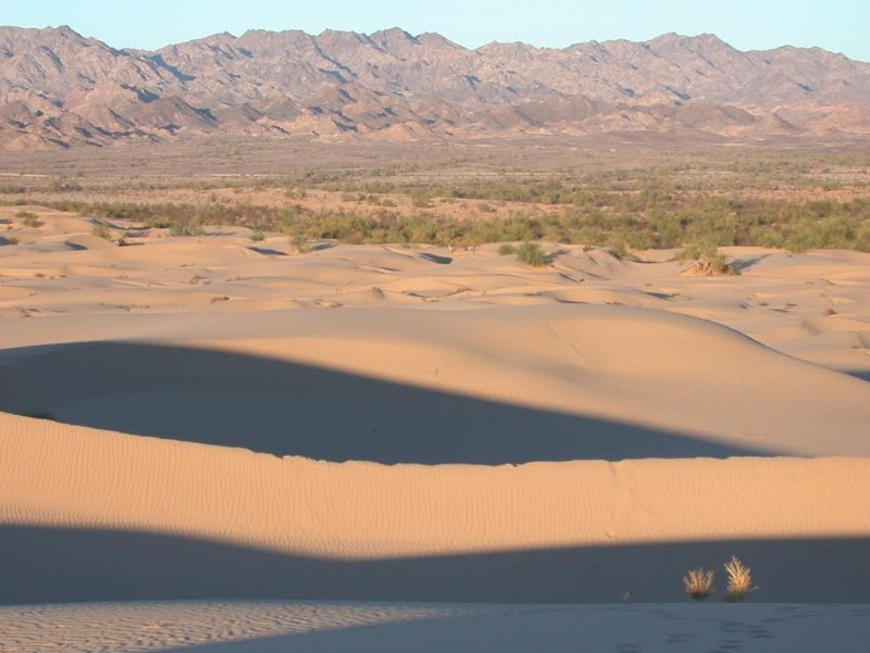 Algodones Dunes Camping or Day Trip - Imperial County - California on map of gold country, map of ripley, map of east idaho, map of cerritos, map ohio county, map of ocotillo, map nebraska county, map of silicon valley, map of salt river, map of san francisco bay, map of salvation mountain, map of north shore, map of southeast ia, map of heber, map of the inland empire,