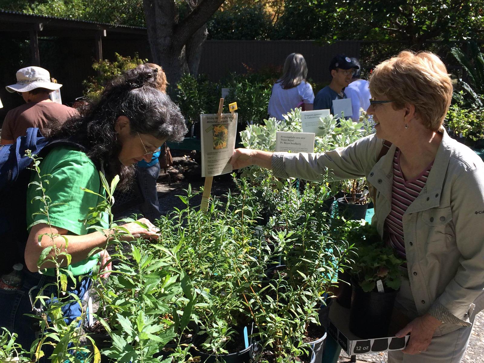 Sacramento Valley Chapter Plant Sale, 2014