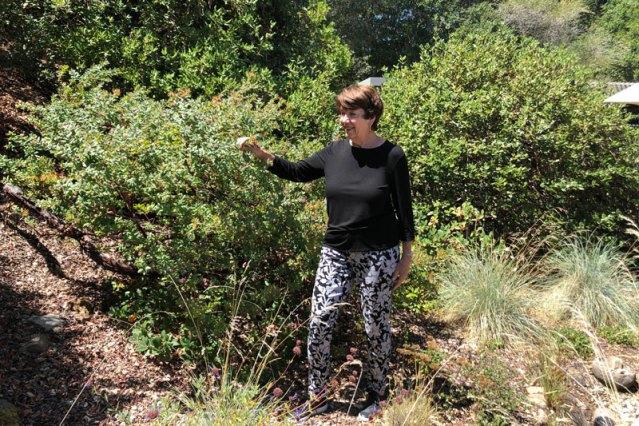 Gardening - California Native Plant Society