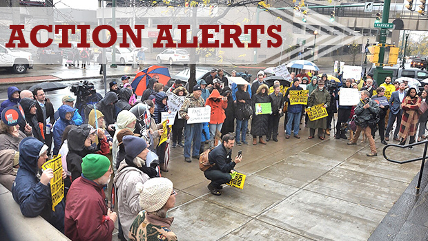 Action Alerts - Tax Scam Protest