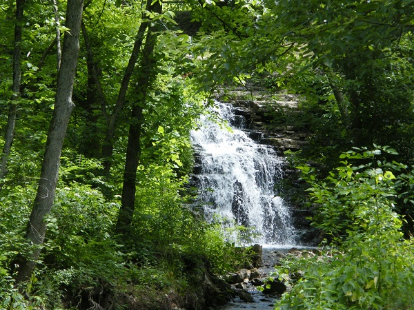 Cass County Indiana France Park