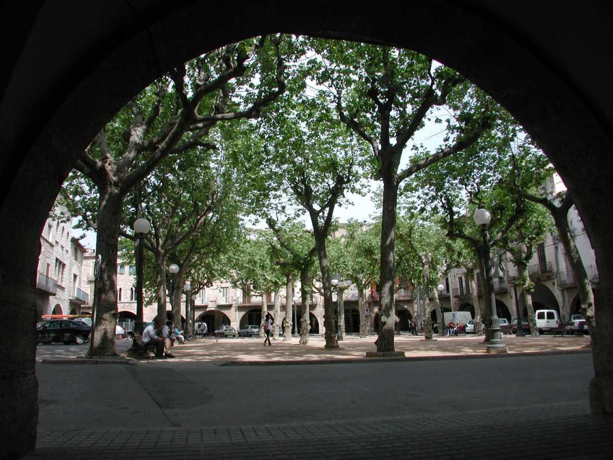 Jornada verd urbà i disseny de la ciutat