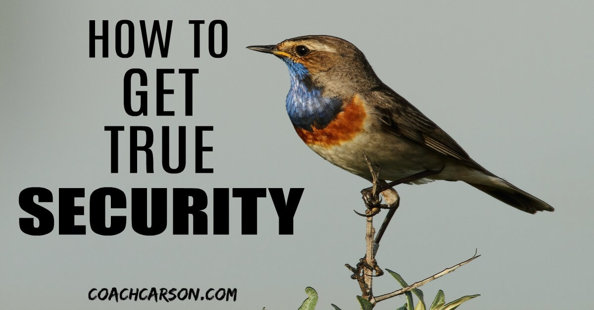 How to Get True Security - Bird on a Branch