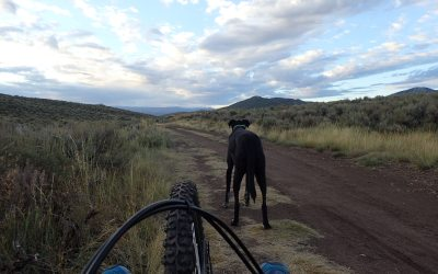 Headed home after tackling my first (itty bitty) section of single track.
