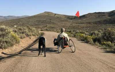 Compression gear to the rescue; some of my favorites. And a quick update on my hand cycling adventures.