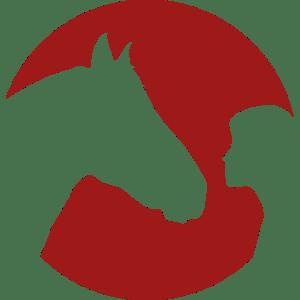 Coaching mit Pferden Harz - Wahrnehmen