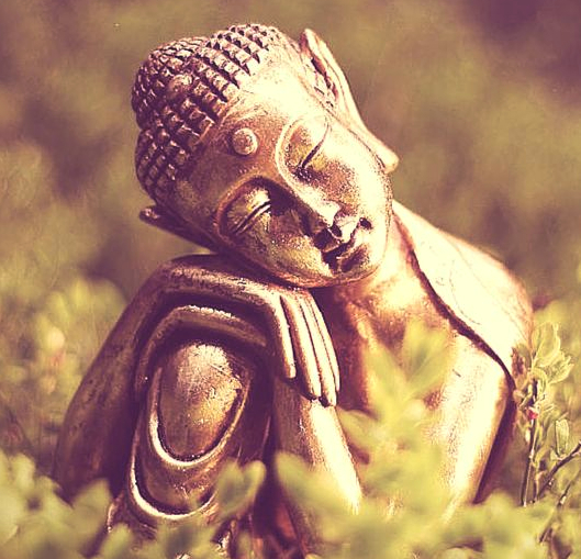 Afbeelding met boeddhabeeldje erop, gevonden op www.coachingmetsanne.com over mediteren voor beginners