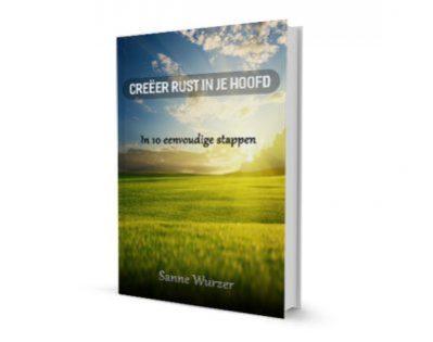 Afbeelding boek Creeer rust in je hoofd sanne wurzer life coach Den Haag