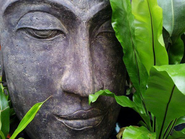 Foto van boeddhabeeld, in blog over zelfvertrouwen op coachingmetsanne.com life coach Den Haag