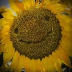 felicità 2