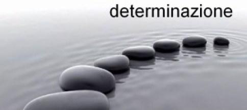 determinazione