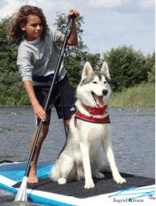 SUPpen met je hond