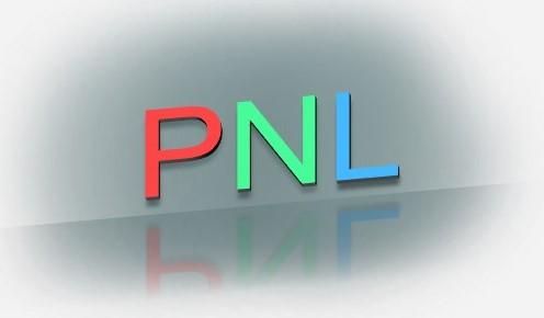 PNL (Programación neurolinguistica)